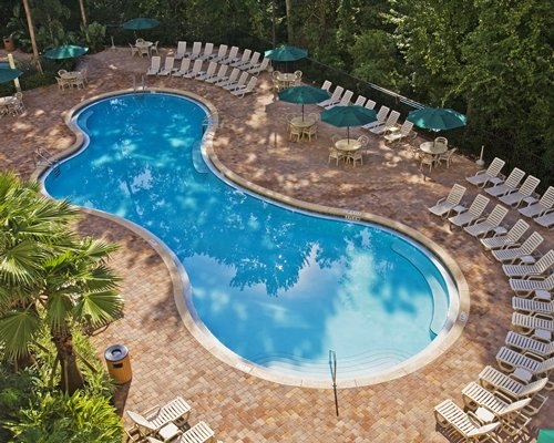 Buy Vacation Village at Parkway Timeshare Rentals
