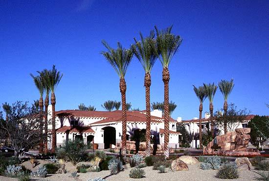 Sheraton Desert Oasis Timeshares